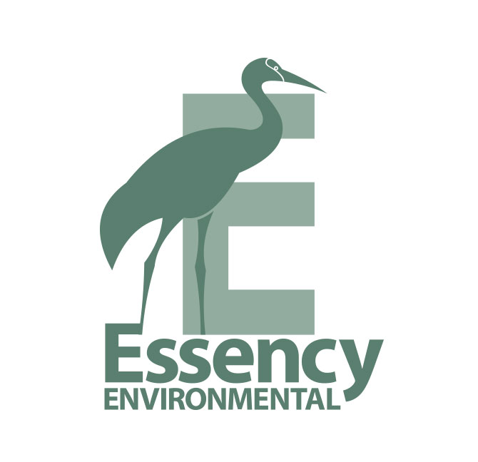 EssencyEnvironmental_logo